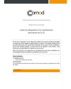 Lettre de désignation d'un représentant permanent (GIE)
